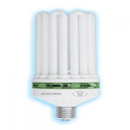 لامپ کم مصرف 145 وات 8 یو نما نور آسیا