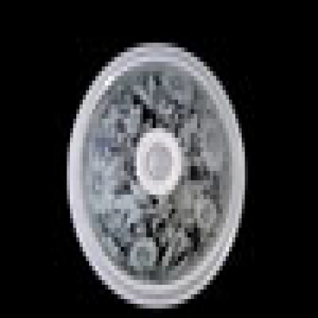 چراغ سقفی سنسوردار پایه پلاستیکی با حباب شیشه ای  البرز